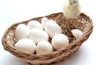 Schluss mit Ostern